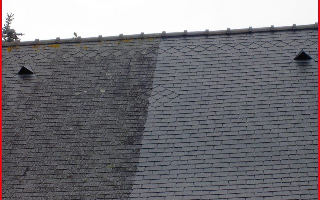 Profitez du Printemps…Pour nettoyer votre toiture !